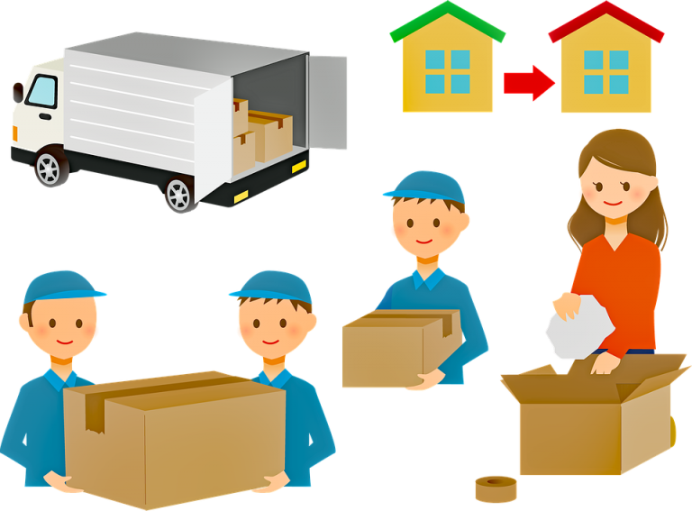 people moving, packing, and transporting